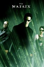 The-Matrix-Poster-MyPosterCollection.com-14-667x1001